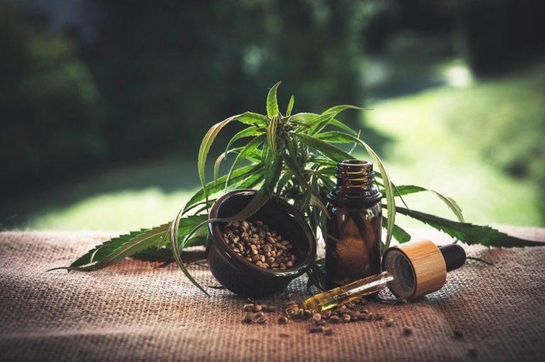 Jak pomóc roślinom marihuany przemysłowej kiedy zaczynają kwitnąć?